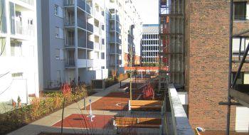 Pflanzarbeiten für die Wohnbau Außenanlage der BAM in Westhafen Frnakfurt