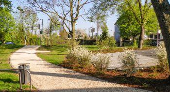 Begrünung der Parkflächen vor dem Kurhaus Bad Vilbel