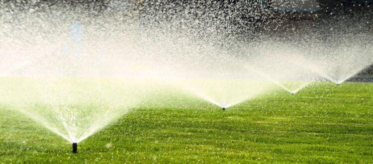 Professionelle Bewässerung